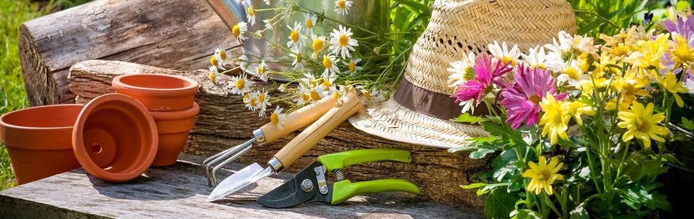 Garteln Gartenpflege Gartengestaltung