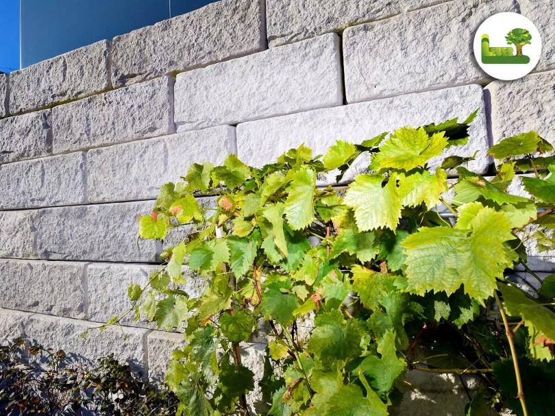Detailansicht einer ReCon-Steinmauer.