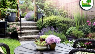Kleiner Garten mit Treppenaufgang und Terrasse inklusive Gartendeko