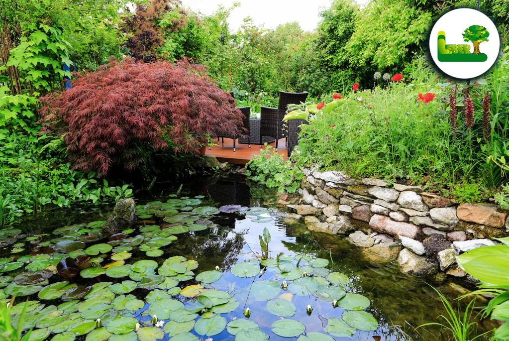 Wasser im naturnahen Garten. Steiermark