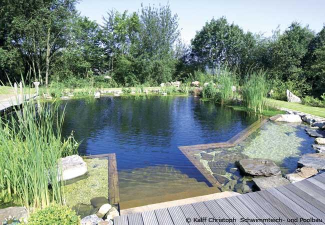 Pool Oder Schwimmteich Im Garten Bauen? Garten HausXXL
