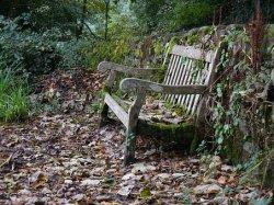 garden- bench alte Holzbank verwittert restauration