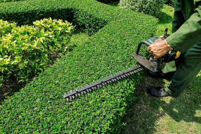 Gartenbau Frank Gartenbau Heilbronn  Gartenbau Ludwigsburg