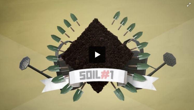 SOIL#1
