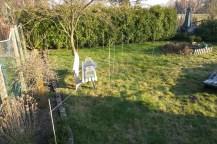 An einem Beet mit Zaun entlang hin zu einem Baum sind Bamabusstöcker aufgestellt und mit einem Faden verbunden