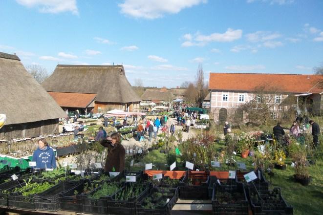 Impressionen vom Pflanzenmarkt am Kiekeberg