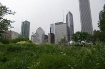 Hochhausskyline mit Grünstreifen im Vordergrund