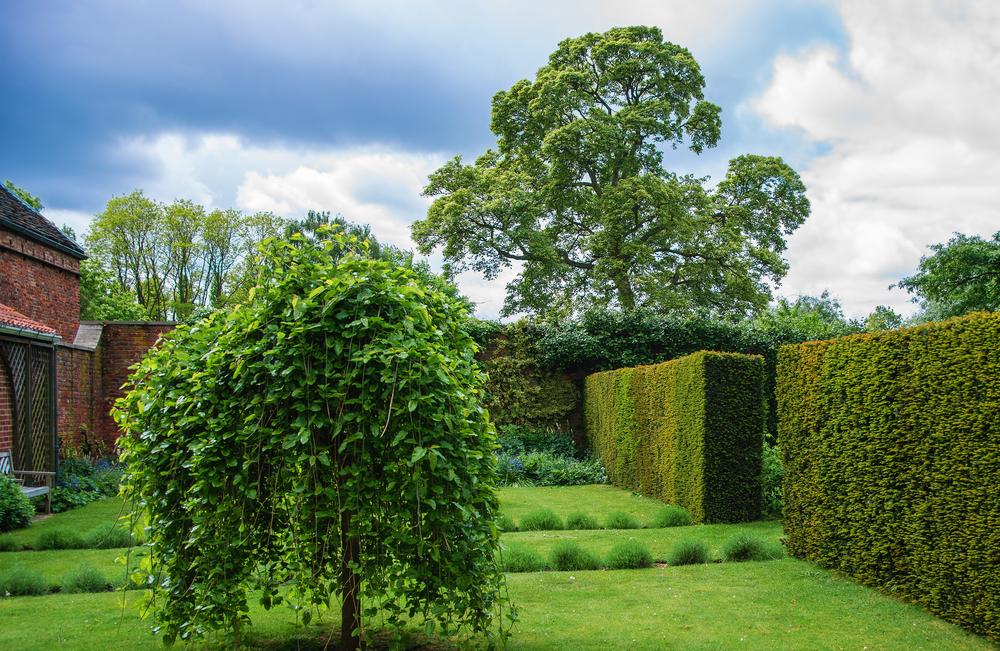 Englischer Garten Anlegen » Schöne Ideen Für Die Schönsten