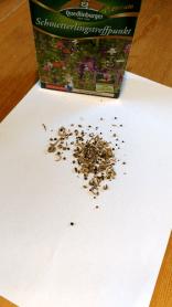 Schnmetterlingstreffpunt Teelöffelprobe