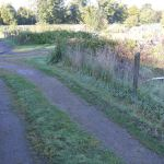 Grass verge cutting