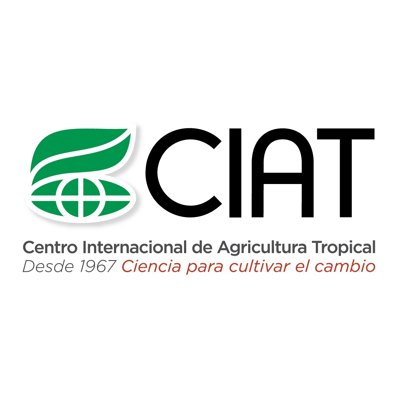 Statistician International Center for Tropical Agriculture  Garth Tarr