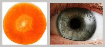 Manfaat Sayuran Wortel Untuk Kesehatan Mata