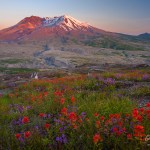 Mount St Helens Washington