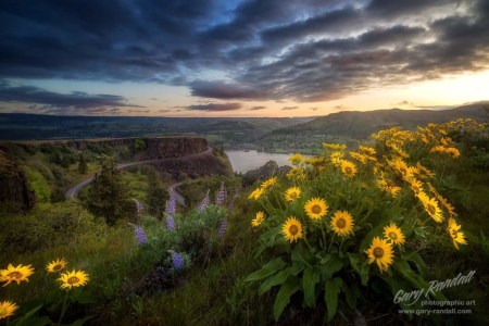 Rowena Crest Oregon