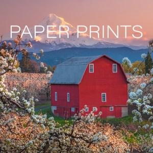 PAPER PRINTS