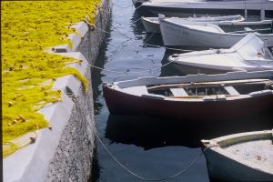 greece-photography-Scan-003.jpg