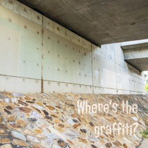 Where's the graffiti? It's not common to see blank concrete in Canberra. Normally there is a huge amount of graffiti (street art). Stalled weight loss. Gary Lum