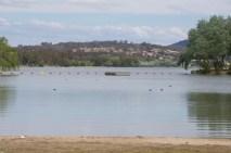 A swimming area