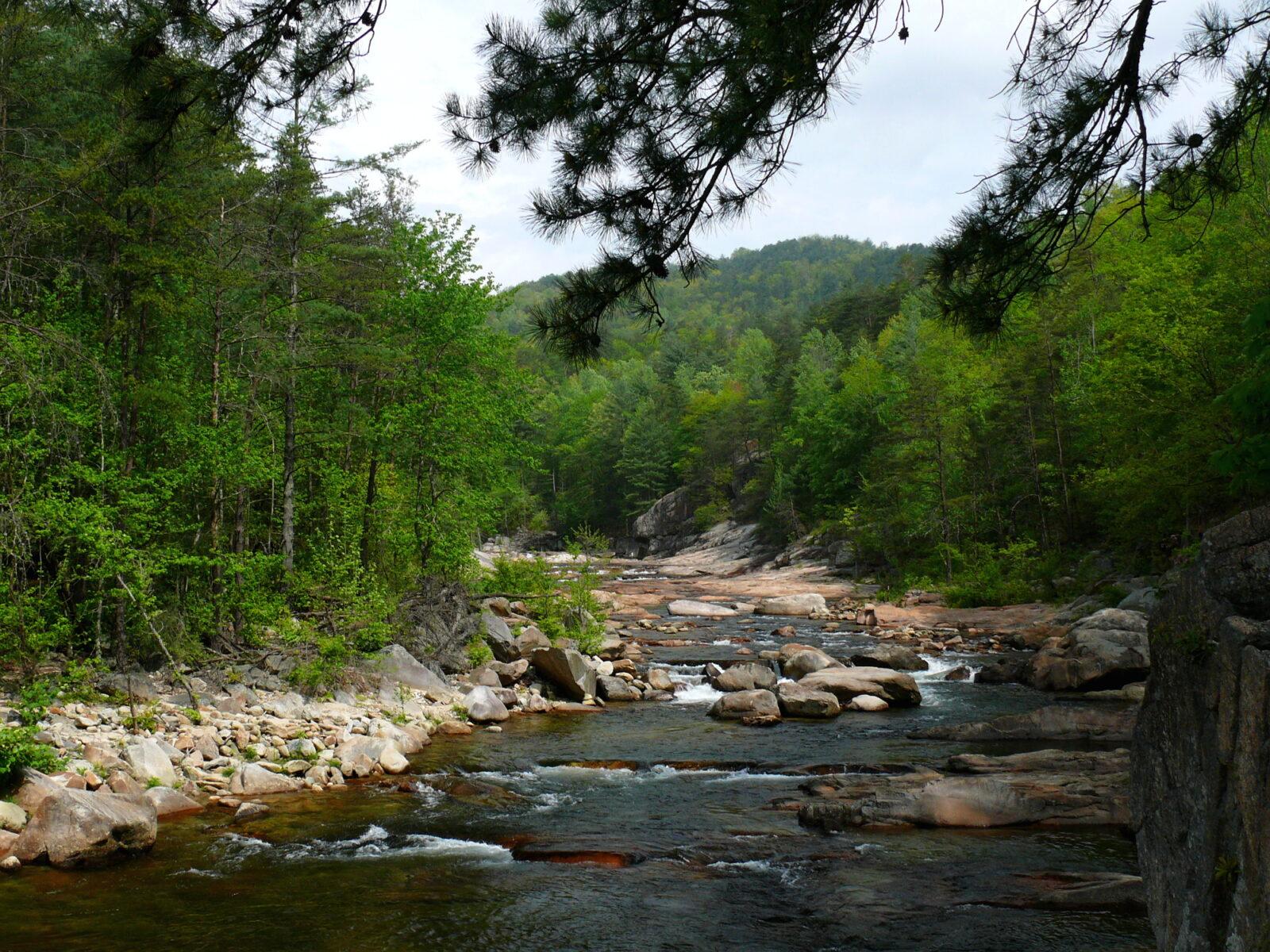 Wilson_Creek-27527-1