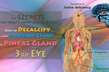 The Secrets They Don't want You to Know – How to Decalcify Your Pituitary Gland and Pineal Gland, our 3rd Eye