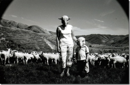 Sheep Farm(com)_thumb
