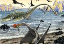 Elasmosaurus & Ornithocheirus