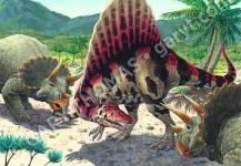 Spinosaurus & Triceratops