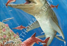 Kronosaurus & Ichthyosaurus