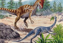 Dilophosaurus & Anchisaurus