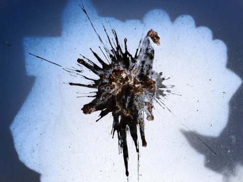 Bird bomb abstract