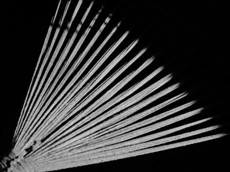 Hammock rays