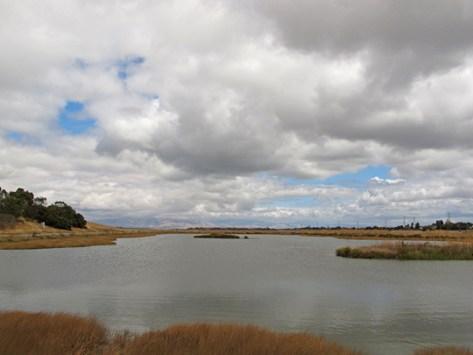 Tidal pond