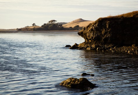 North end of Tomales Bay