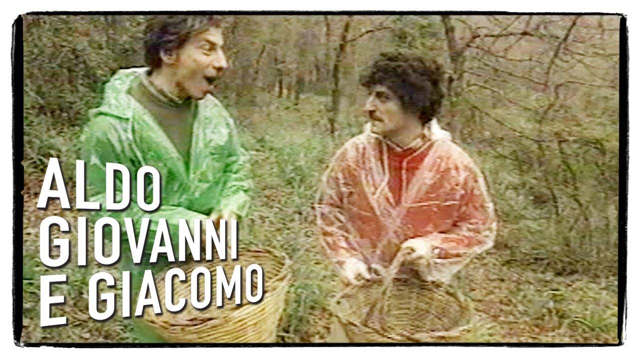 """""""Gli Svizzeri"""" di Aldo, Giovanni e Giacomo – La raccolta funghi"""