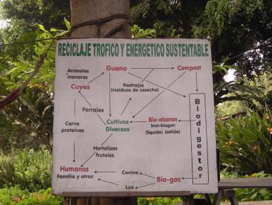 AGRICULTURA ECOLGICA  EL GAS DE CUYISEA