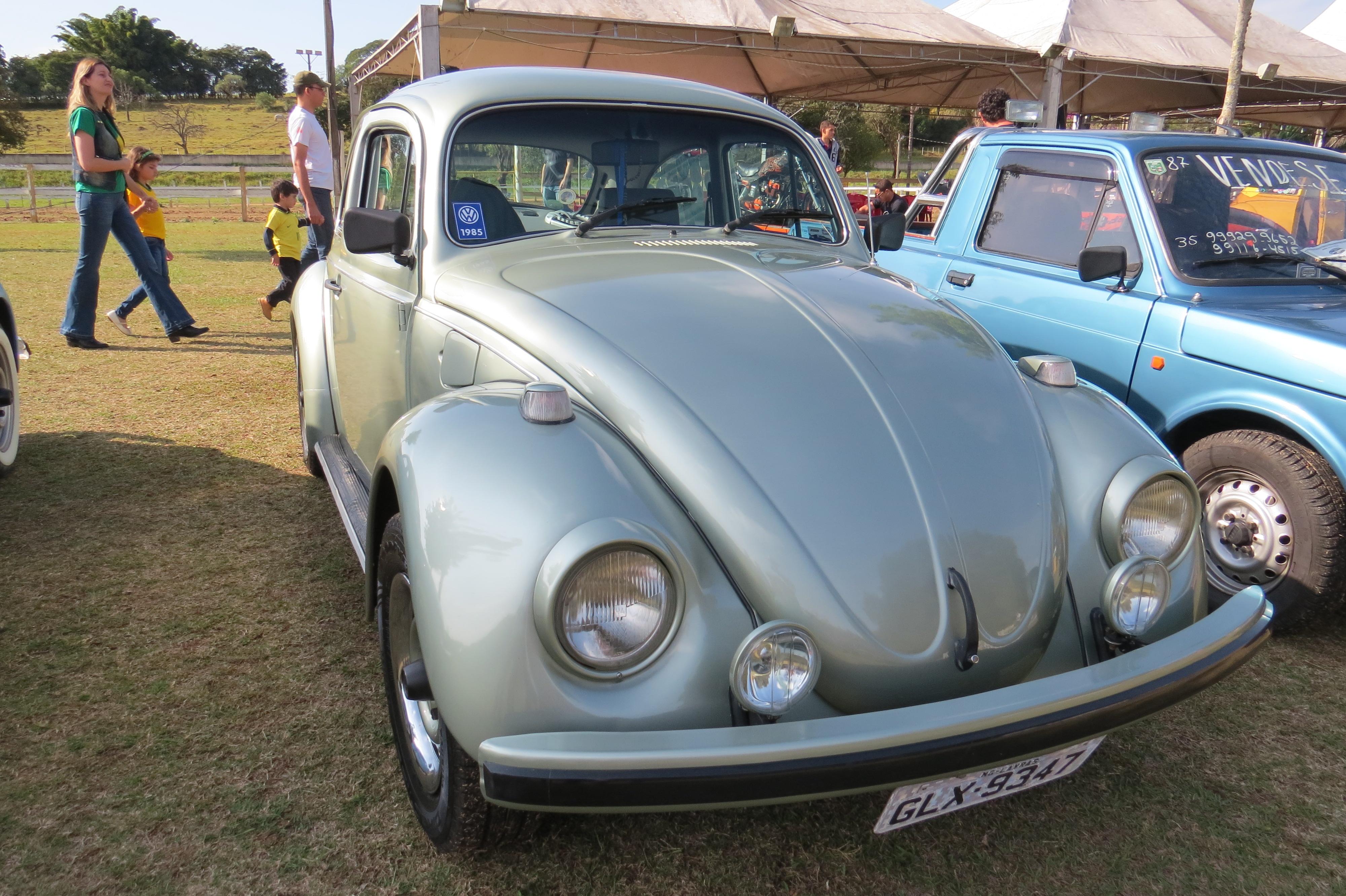 IMG 4867 - 3º Grande Encontro dos Carros Antigos do Sul de Minas