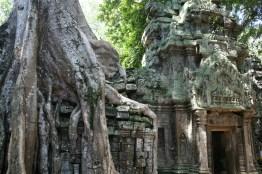 Ankor Wat 2