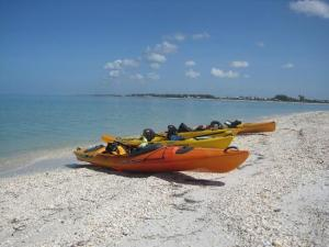 #9 1/2 on our on our top 10 things to do on Boca Grande.