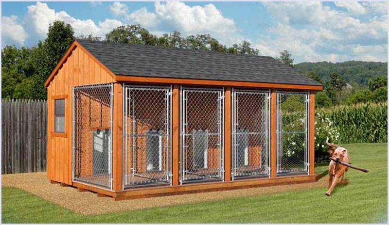 10 X 16 Triple Kennel Hometown Sheds Gastonia North