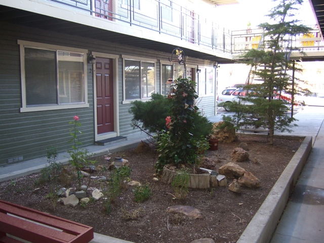 Linden courtyard 1