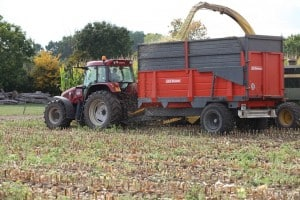 Tractor and Trailer during Harvest
