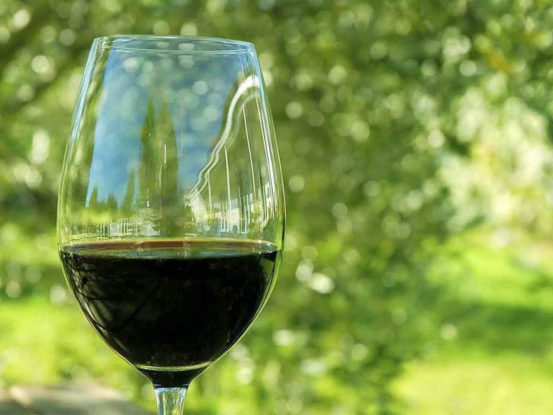 Que son los Vinos ecologicos. Claves para entenderlos