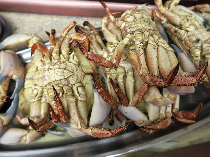 Restaurante Tasmallo A Guarda Pontevedra Bueyes de mar