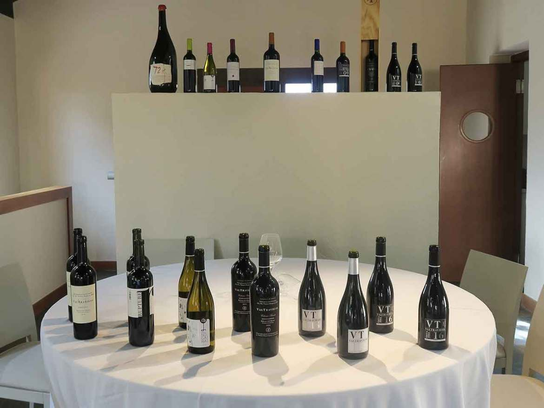Bodegas Valtravieso vinos cata maridaje
