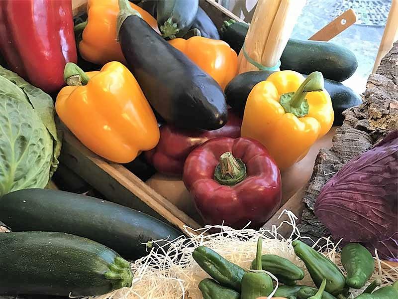 Fiesta de las verduras de Tudela pimientos