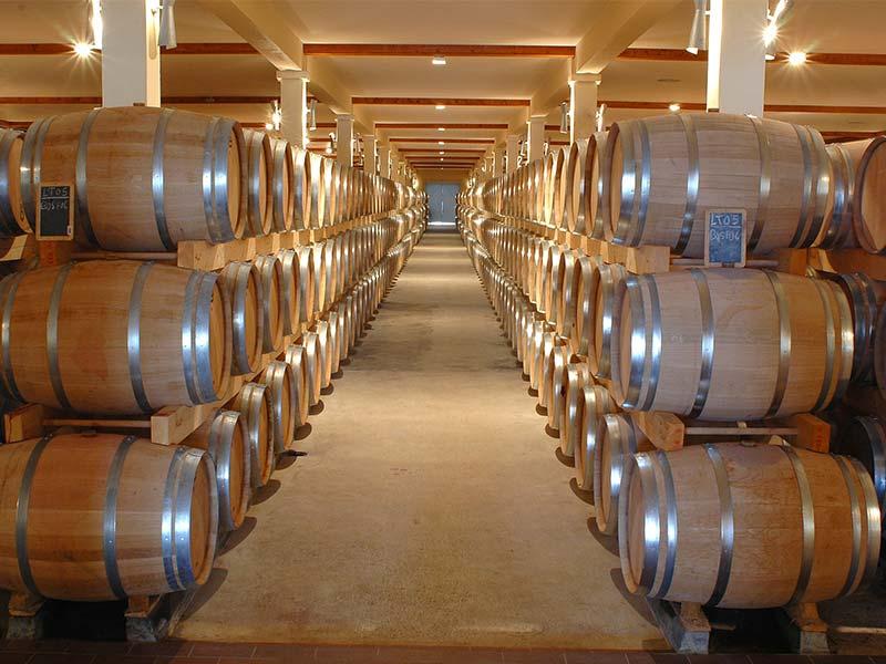 como elegir un vino Bodega