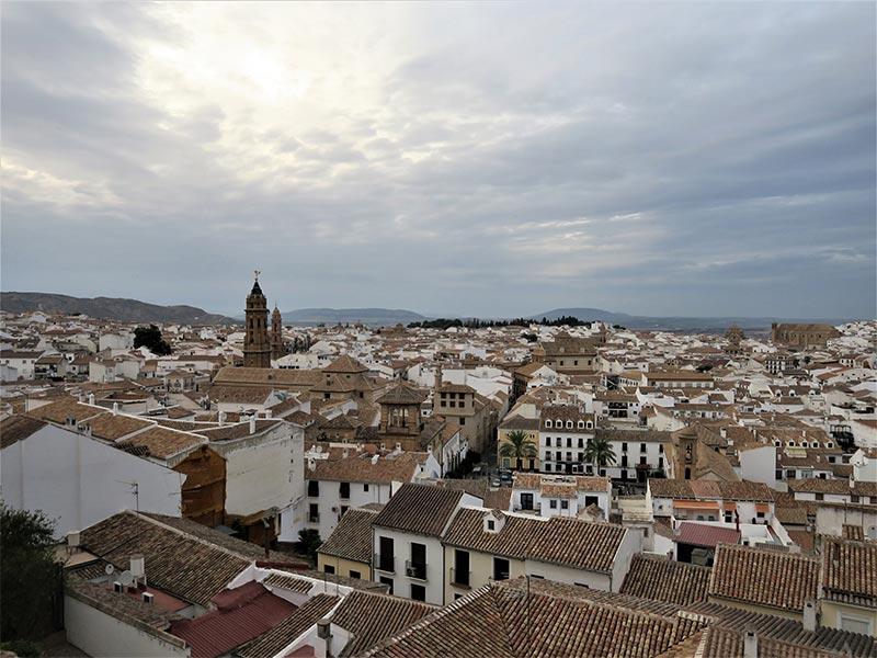 Interior de Malaga Antequera