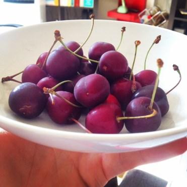 cherries, fresh cherries, raw cherry, cherry stalks, bright cherries