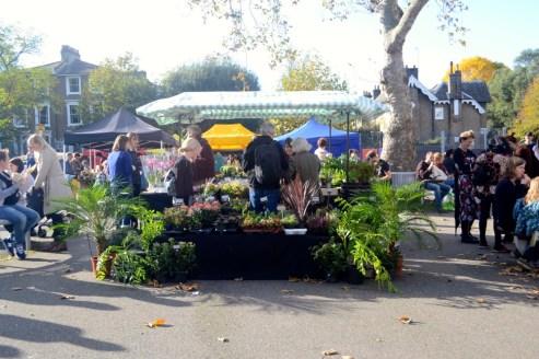 plants, herbs, flowers, people, market, local, peckham, se15