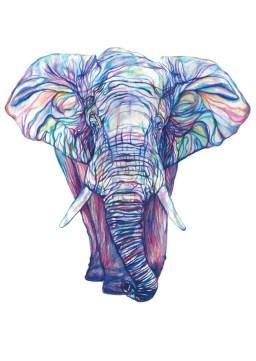claudine o'sullivan elephant, claudine o'sullivan prints dublin, irish claudine o'sullivan prints, jam art factory claudine o'sullivan